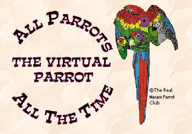 The Real Macaw Parrot Club